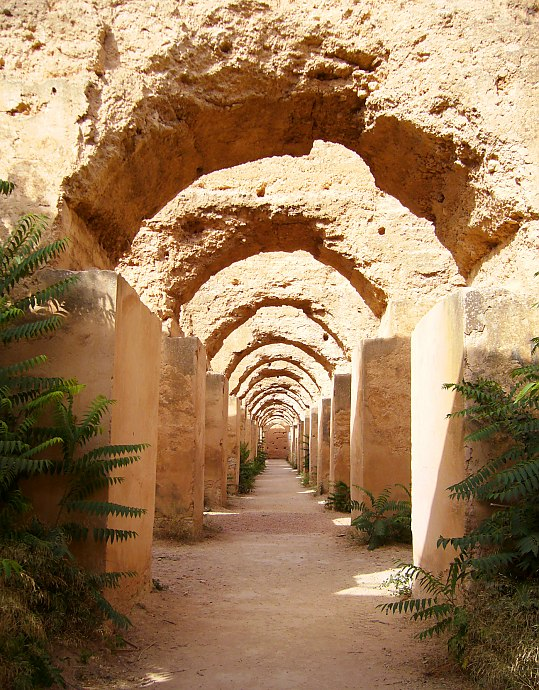 Meknes – Region of Sun-Drenched Wines